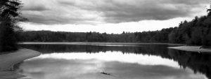 Holownia Thaddeus Walden revisited Thoreau's Cove 2003 gelatin silver 7x17